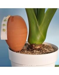 Oyas® à planter nature 1.5L