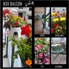 Box balcon
