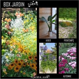 Box jardin 4 saisons (4 colis par an)