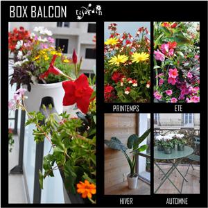 Box 4 saisons Tijardin balcon