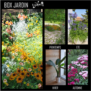 Box 4 saisons Tijardin Jardin